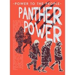 Black Panthers Poster Panther Power Print a4 ORIGINAL