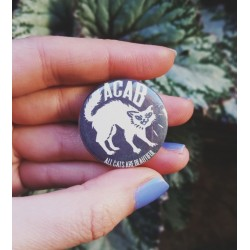 acab all cats are beautiful badge pin button chapa
