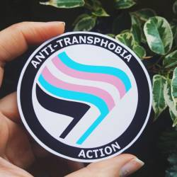 Anti transphobia action sticker