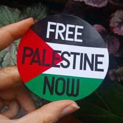 Free palestine now sticker